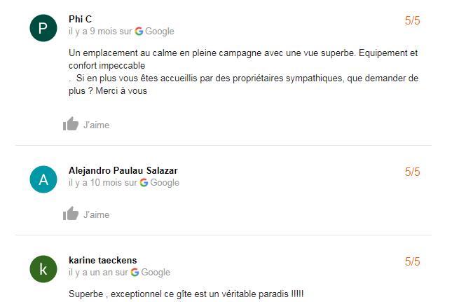 avis-google-2